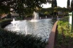 Curtis Pools Pretoria. Award winning water feature