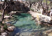 Concrete Pool with Combined Special Surround and Features