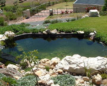 STYLE COUNCIL : Nature Pools, Ponds, Rock Features & Waterfalls